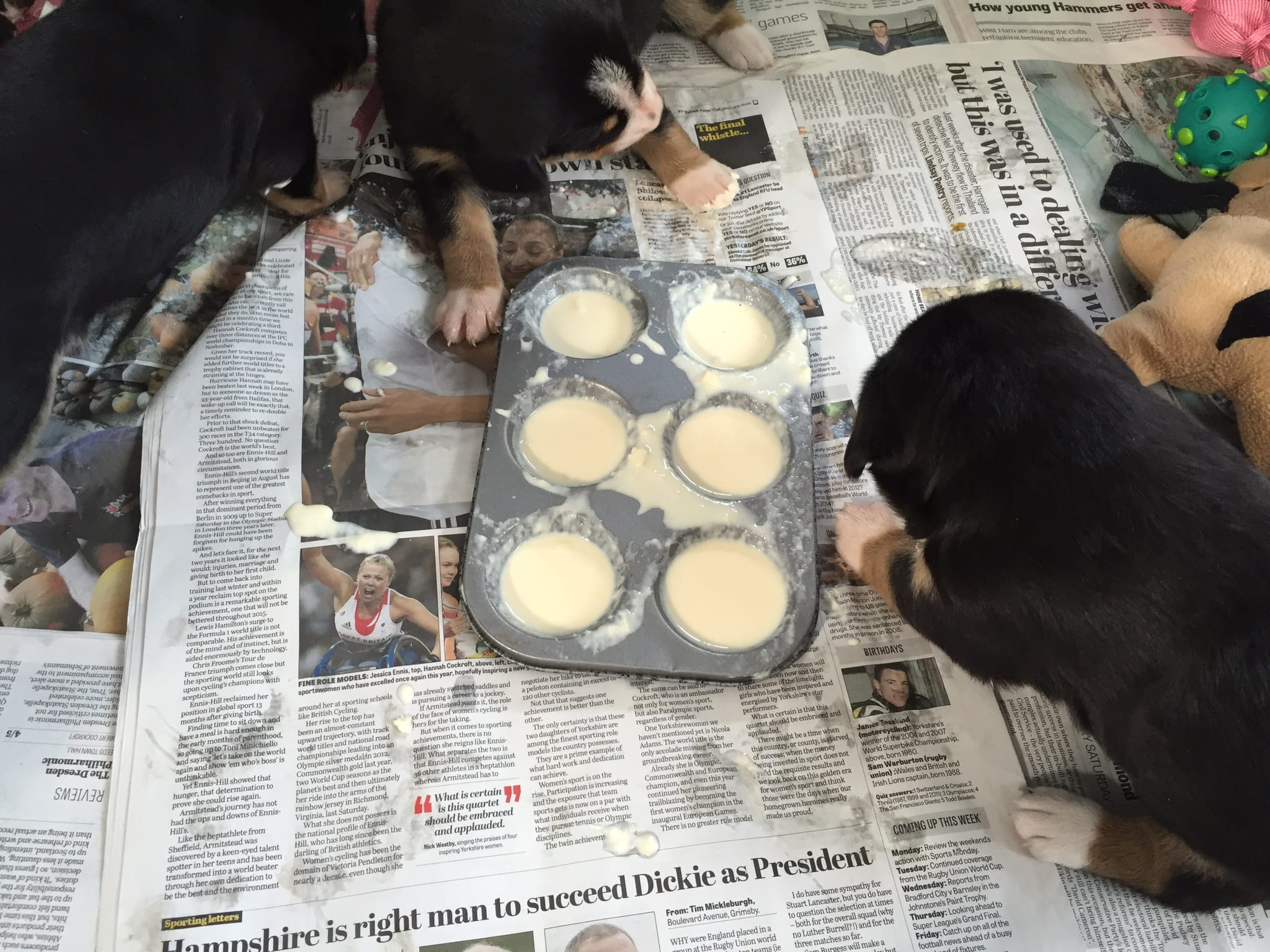 Trying puppy gruel