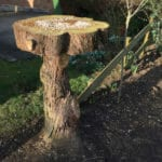 Natural bird table